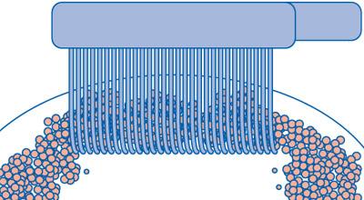 Limpeza eficiente de superfícies graças as cerdas CUREN® densamente compactadas